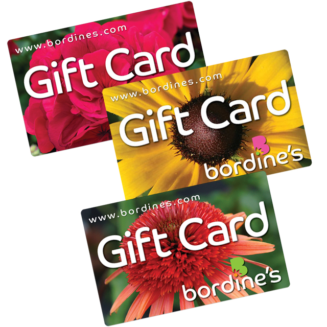 Bordine's Gift Cards